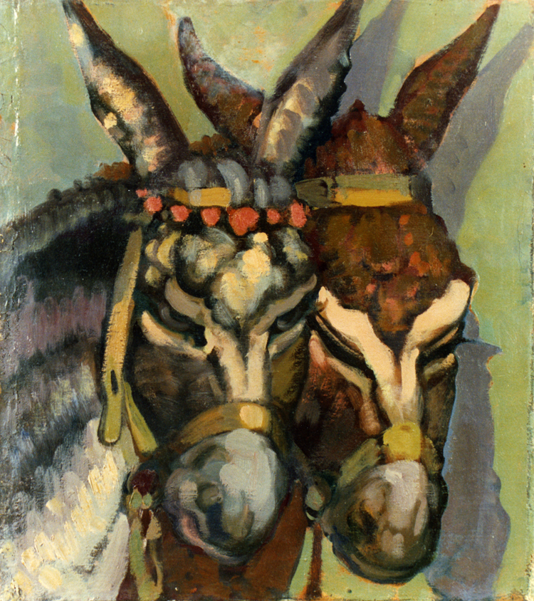 Cabezas de burro